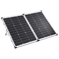 vidaXL Kokoontaitettava aurinkopaneeli kotelolla 120 W 12 V