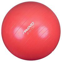 Avento Fitness/jumppapallo halkaisija 55 cm pinkki